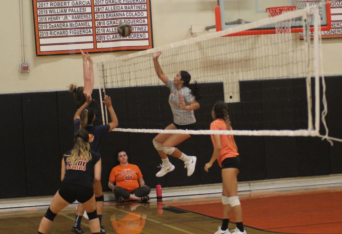 Selma volleyball season preview