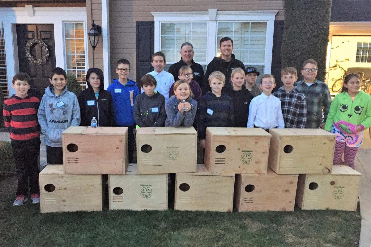 Building boxes: 1