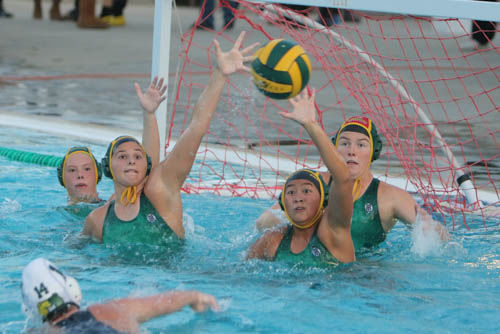 Kingsburg water polo preview