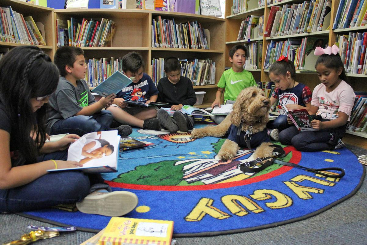 Reading: Mynderup's class