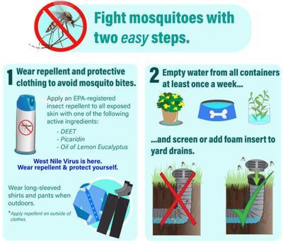 West Nile Virus: Graphic