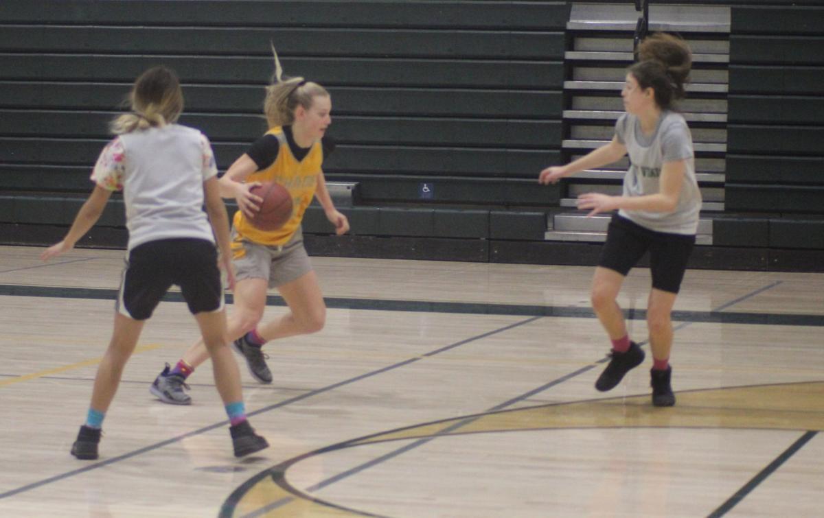 Kingsburg girls basketball 2018-19 preview