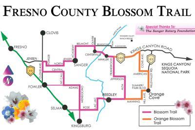 Blossom Trail: Map