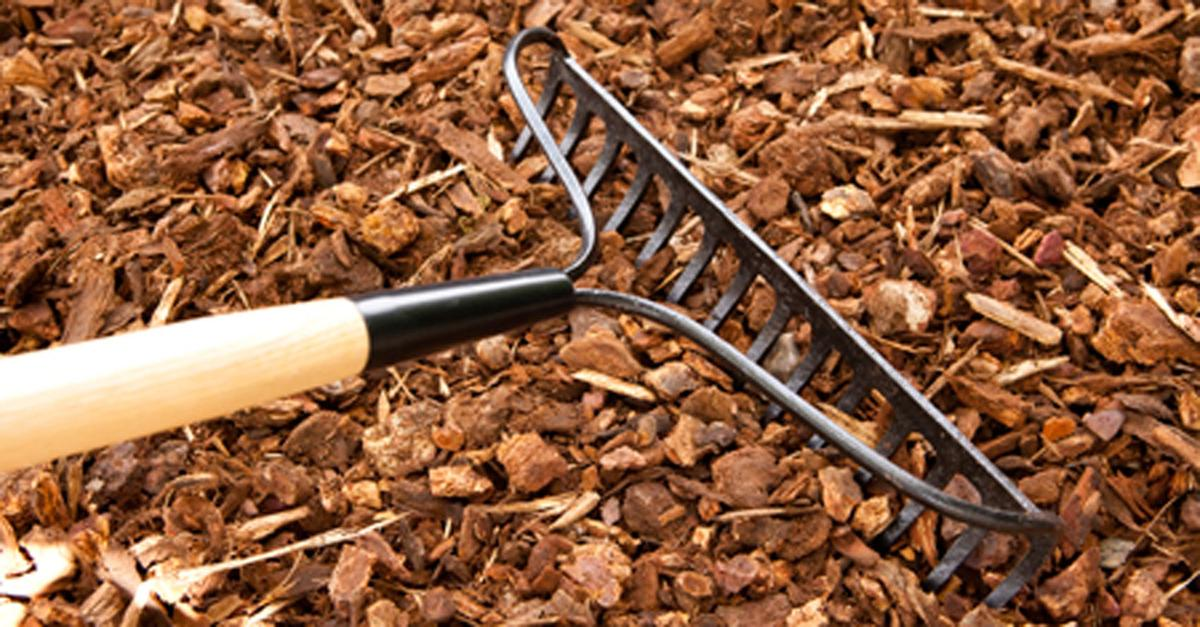What Is The Difference Between Mulch And Compost Features