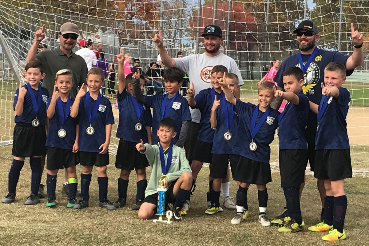 Youth soccer: The Sharks