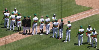 MInor League Baseball season canceled