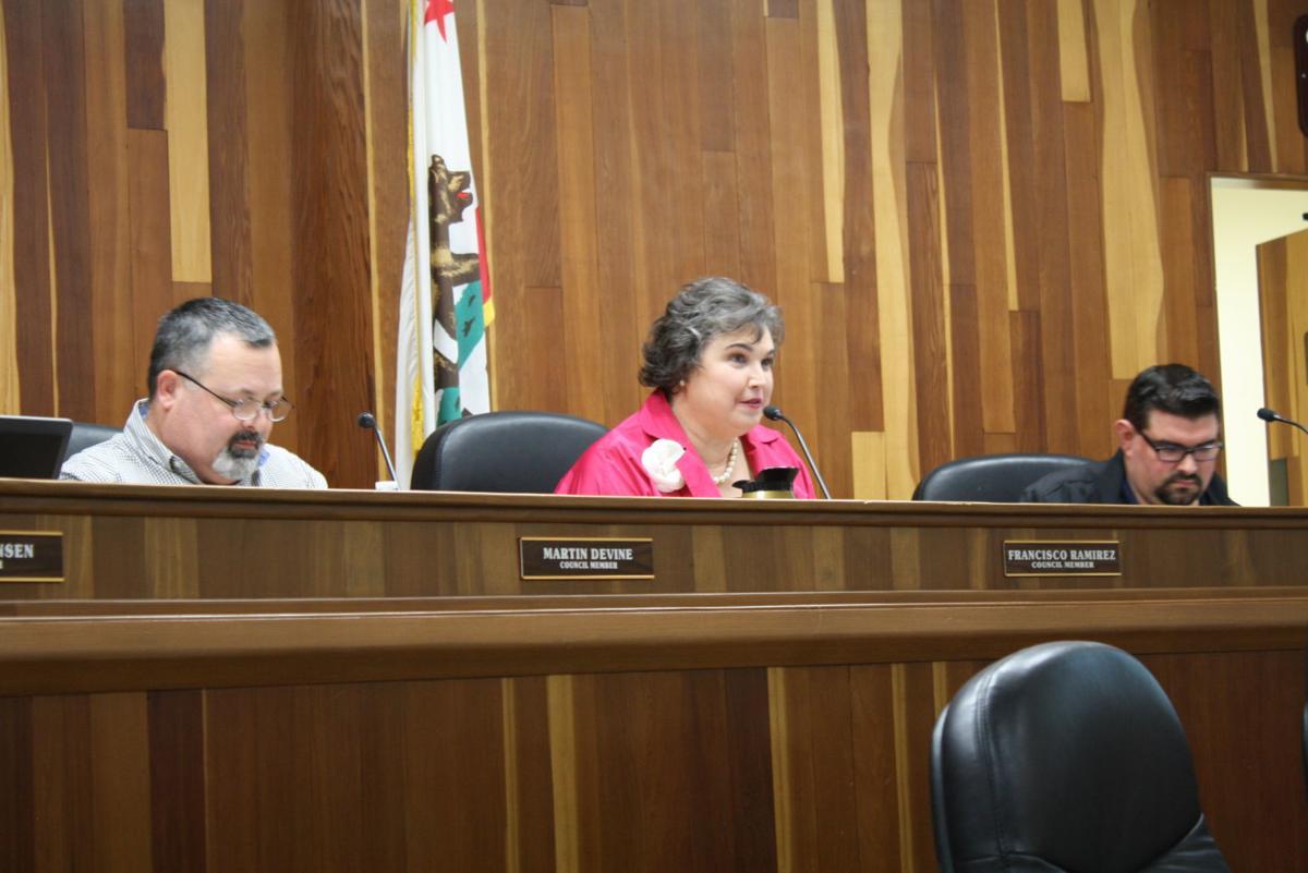 Diane Sharp council