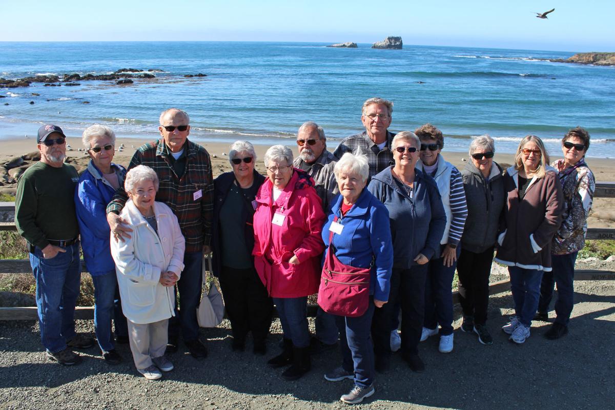 Senior Center: Seal watching