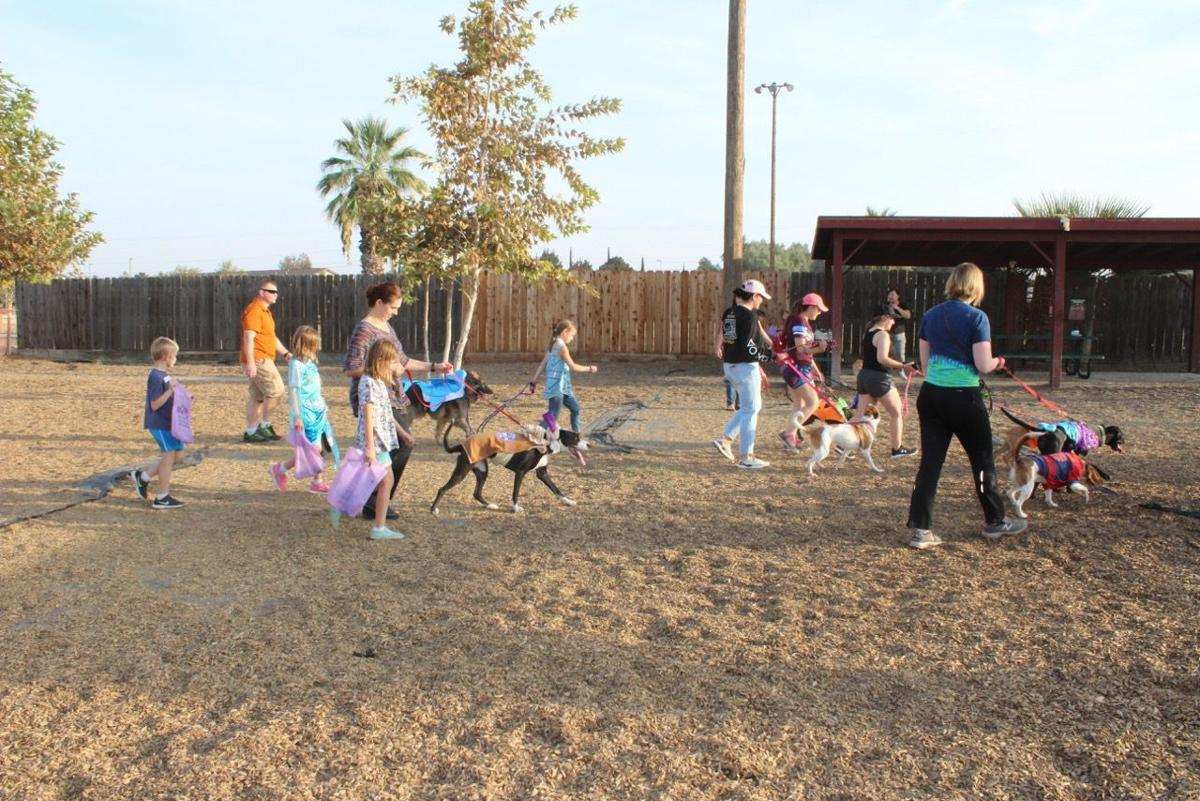 NAS Lemoore supports Domestic Violence Prevention Month with Wiggle Waggle Walk