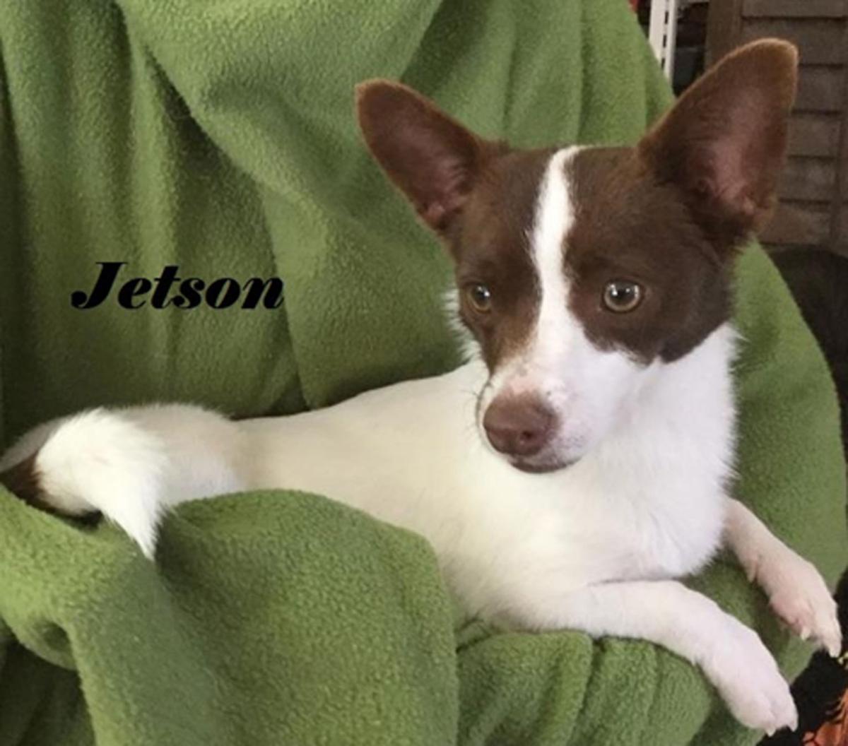 Take me home Jetson