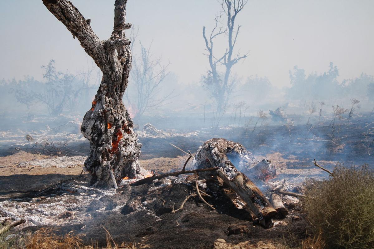 14th-grangeville fire