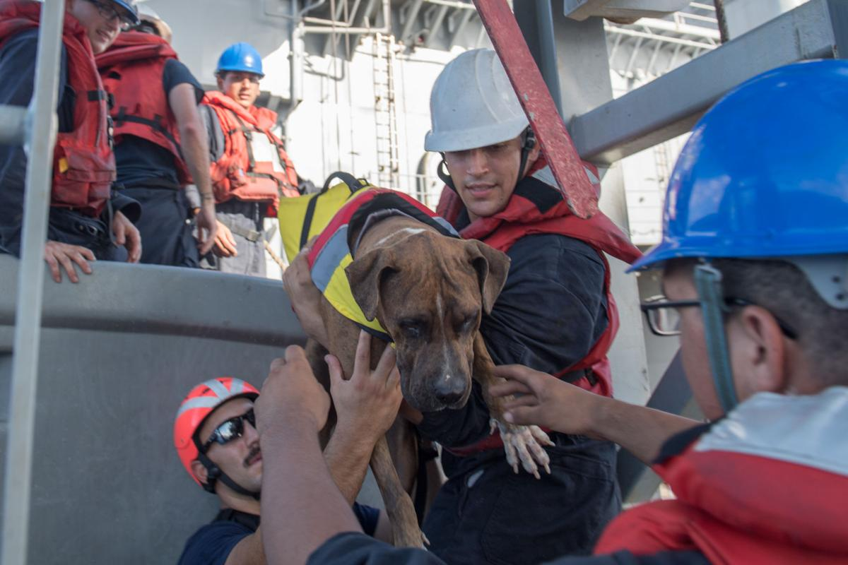 USS Ashland assists distressed mariners in Pacific Ocean