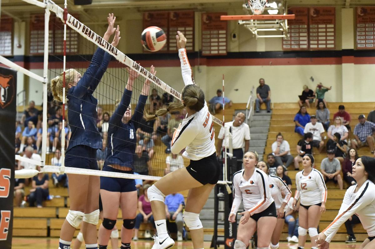 Selma volleyball: Marissa Cerda