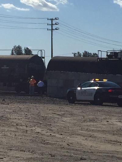 Police: Man struck, killed by train | Local