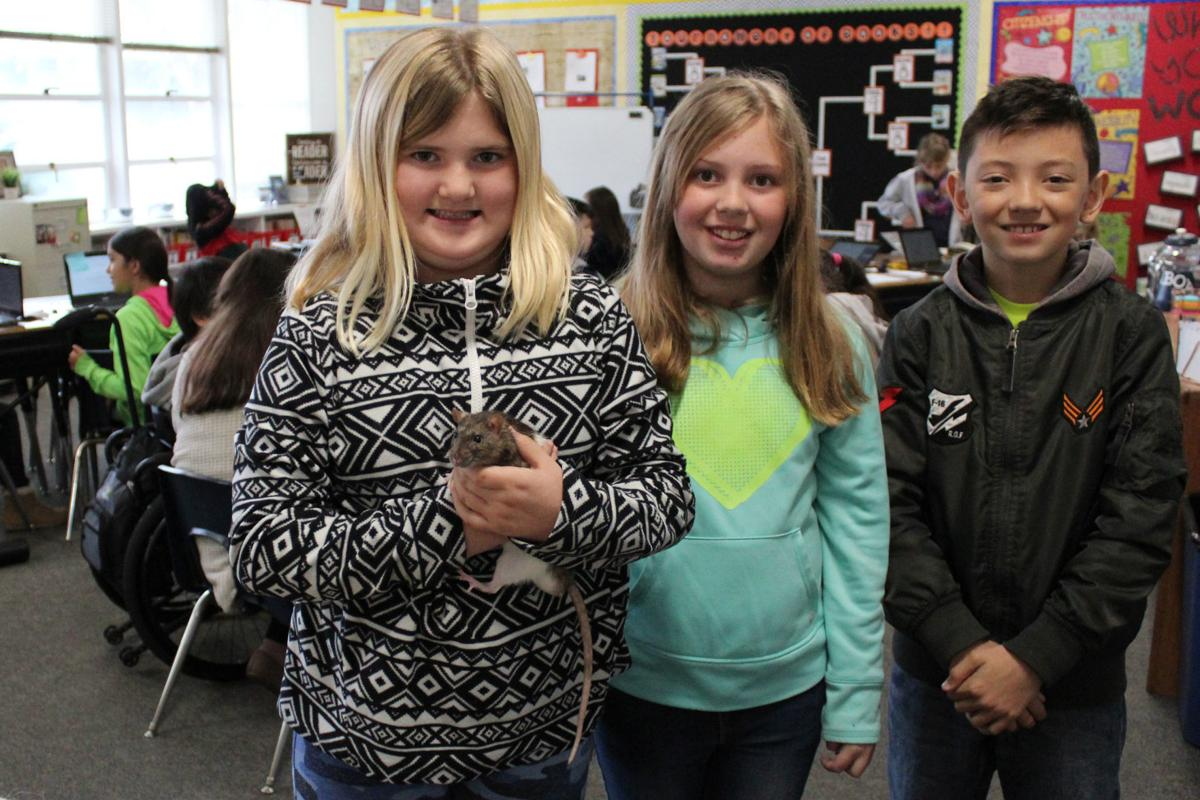 Donor: Third graders