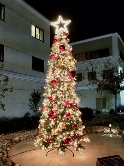 Adventist Tree Lighting
