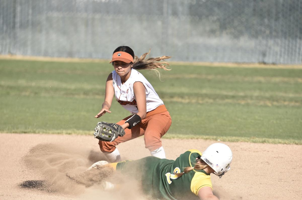 Selma/Kingsburg softball