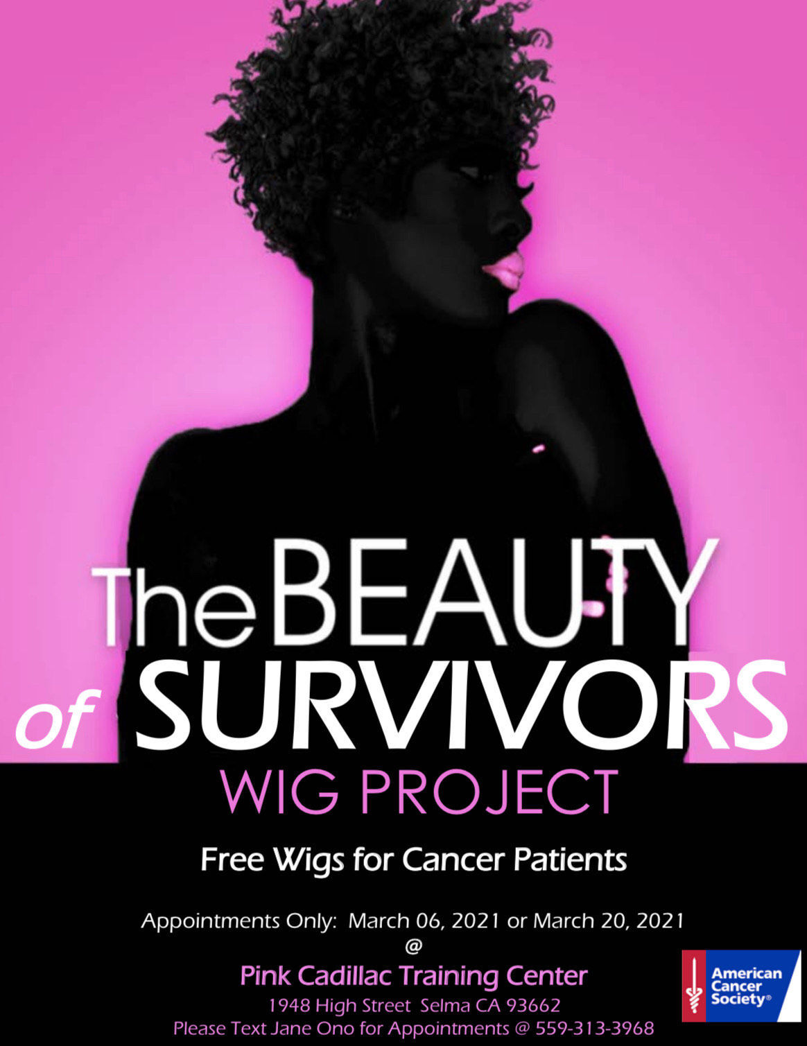 Project to donate 100 wigs to cancer survivors