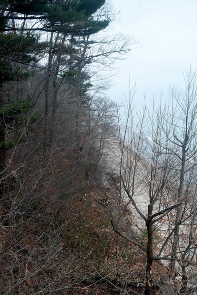 Cherry Beach View