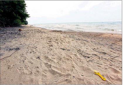 6 28 WEB Beach Closed scene.jpg