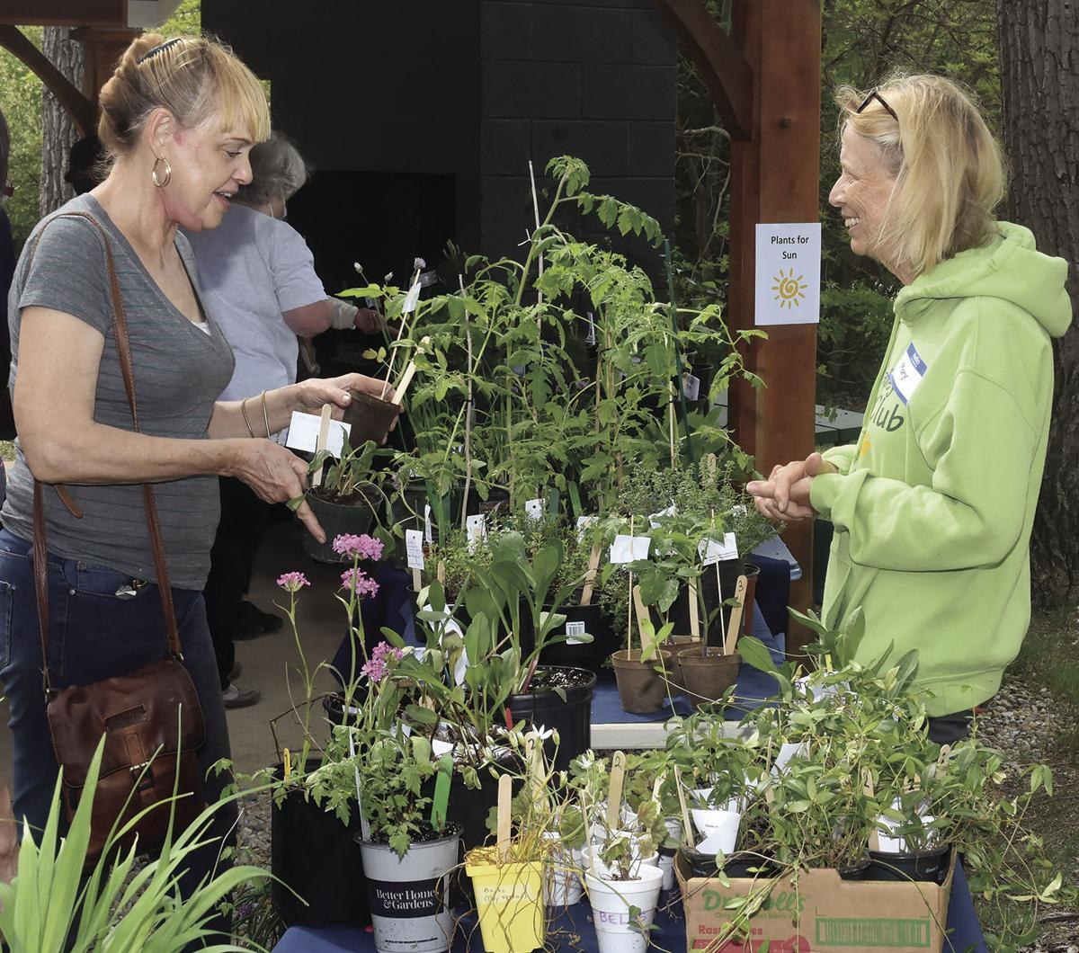 5 27 Plant Sale 2 Table duo.jpg