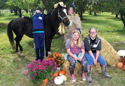 10 15 Spring Creek 1 Pony at Orchard.jpg