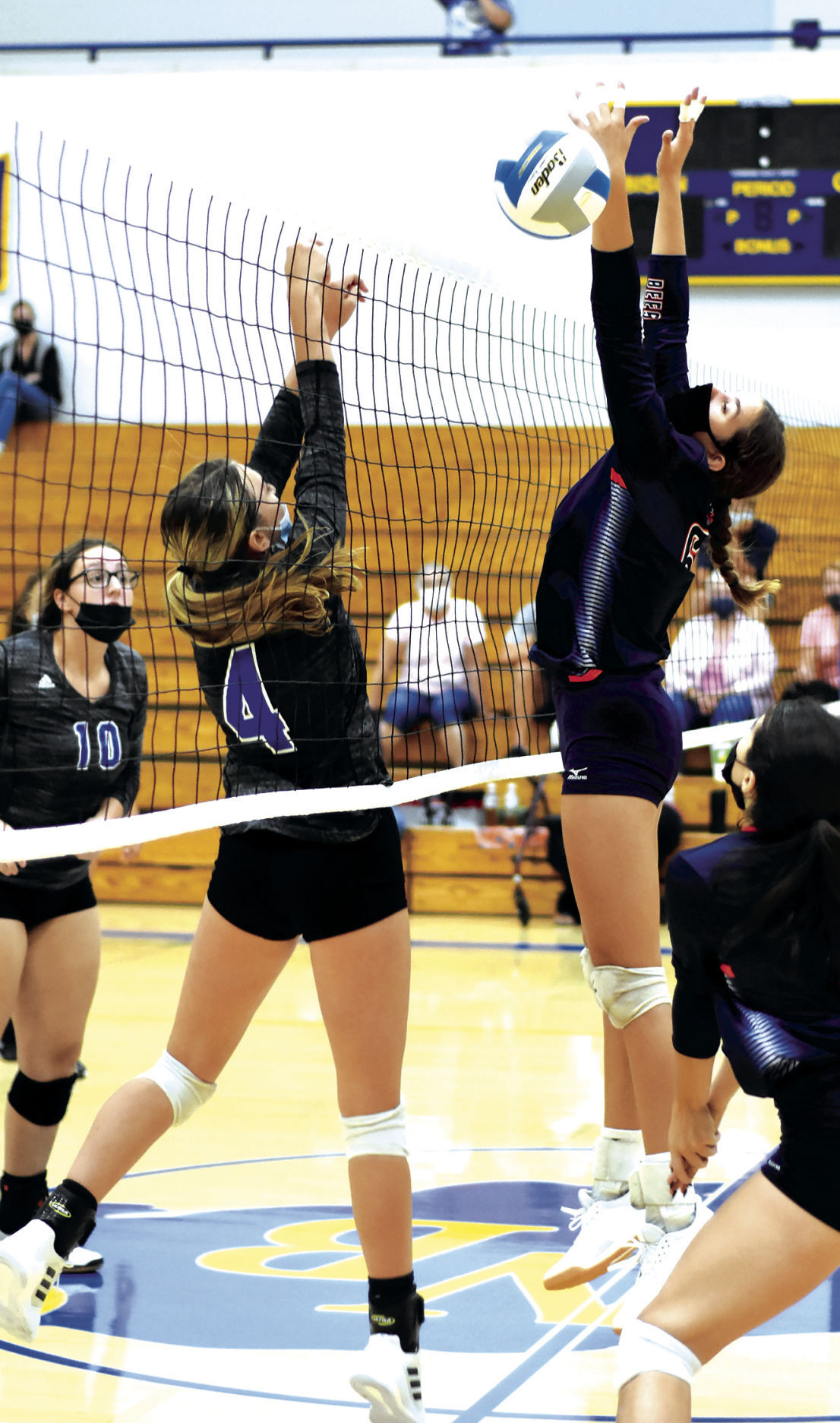 9 16 Sports Volley 2 Bees 4 and 6 at net.jpg