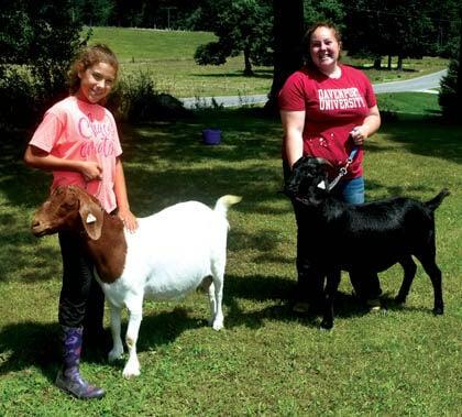 8 14 Fair 2 pre Goats Donner duo.jpg