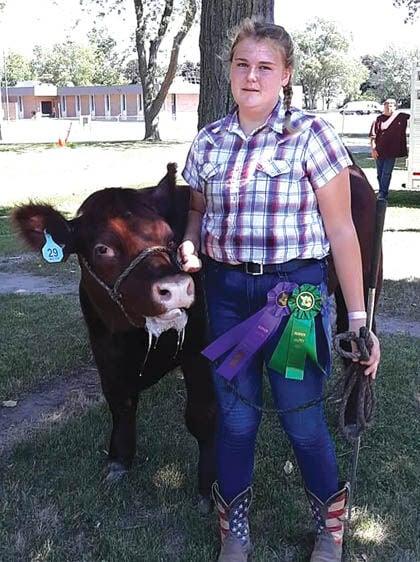 8 28 Fair 1 Beef Hauch 1.jpg