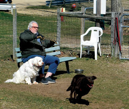 4 10 Animals 2 Harbert Dog Park scene.jpg