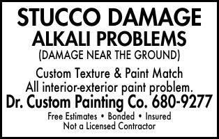 Dr Custom Painting