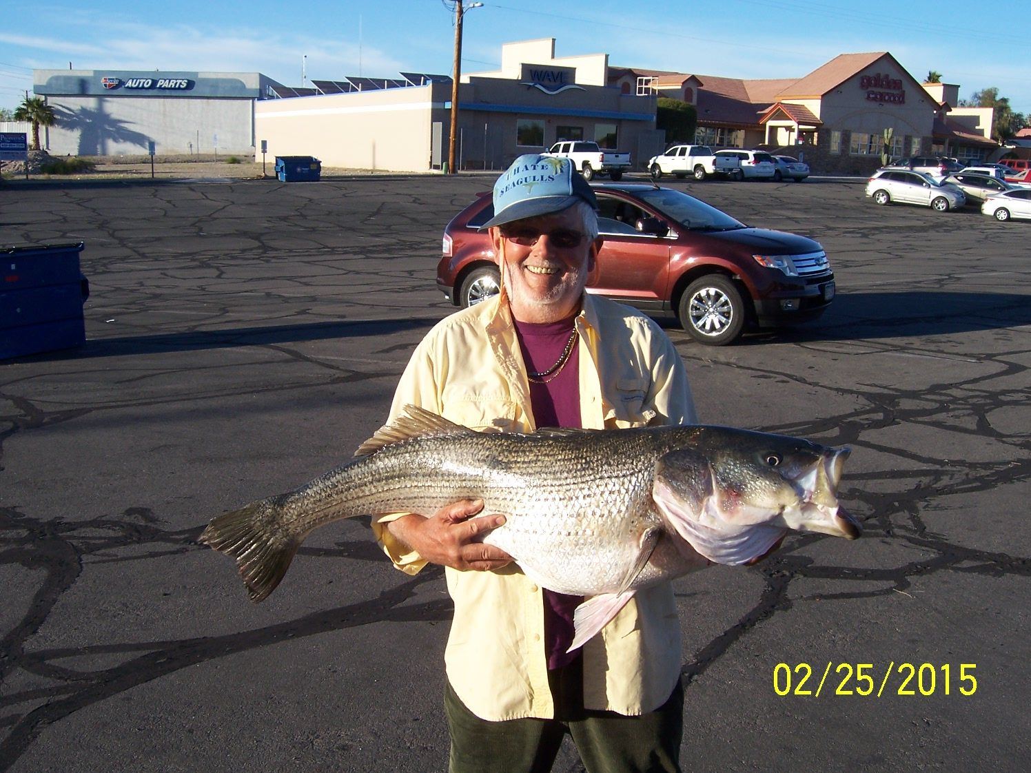 Fishing lake havasu city