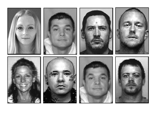 More than a dozen arrested after undercover operation
