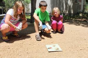 This week's children's activities