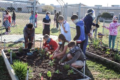 Tally students plant Spring garden