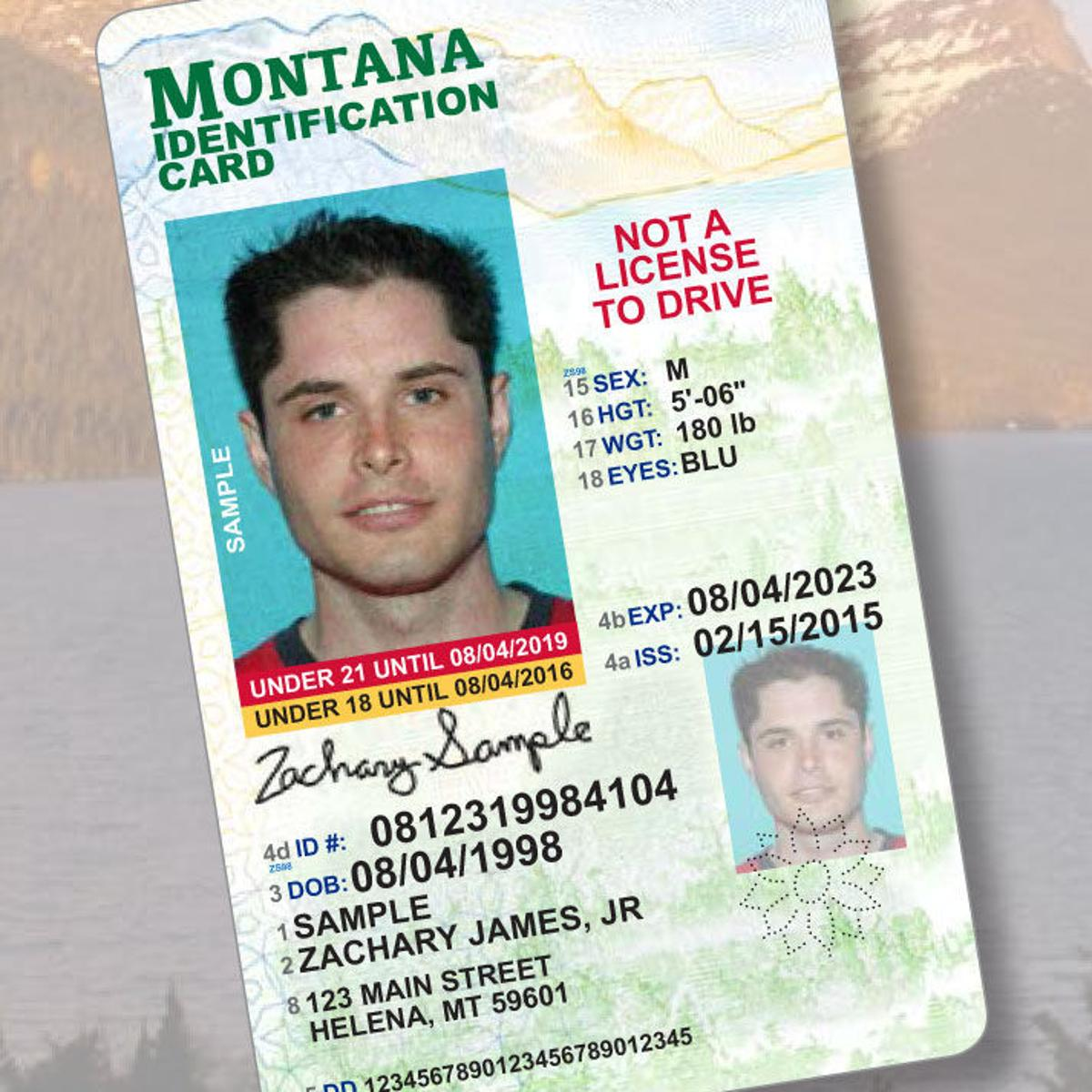 renewing drivers license in montana