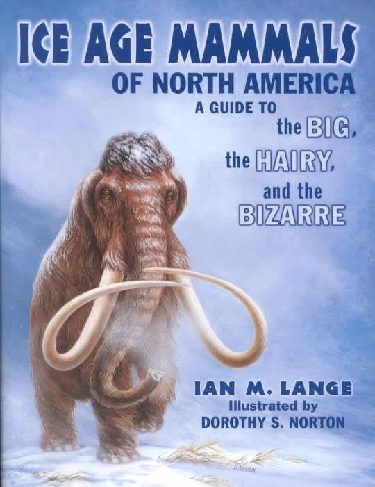 Ian Lange book