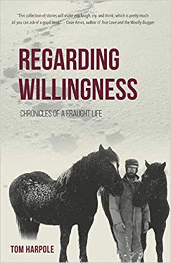 Regarding Willingness book.jpg