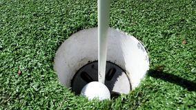 golf brief