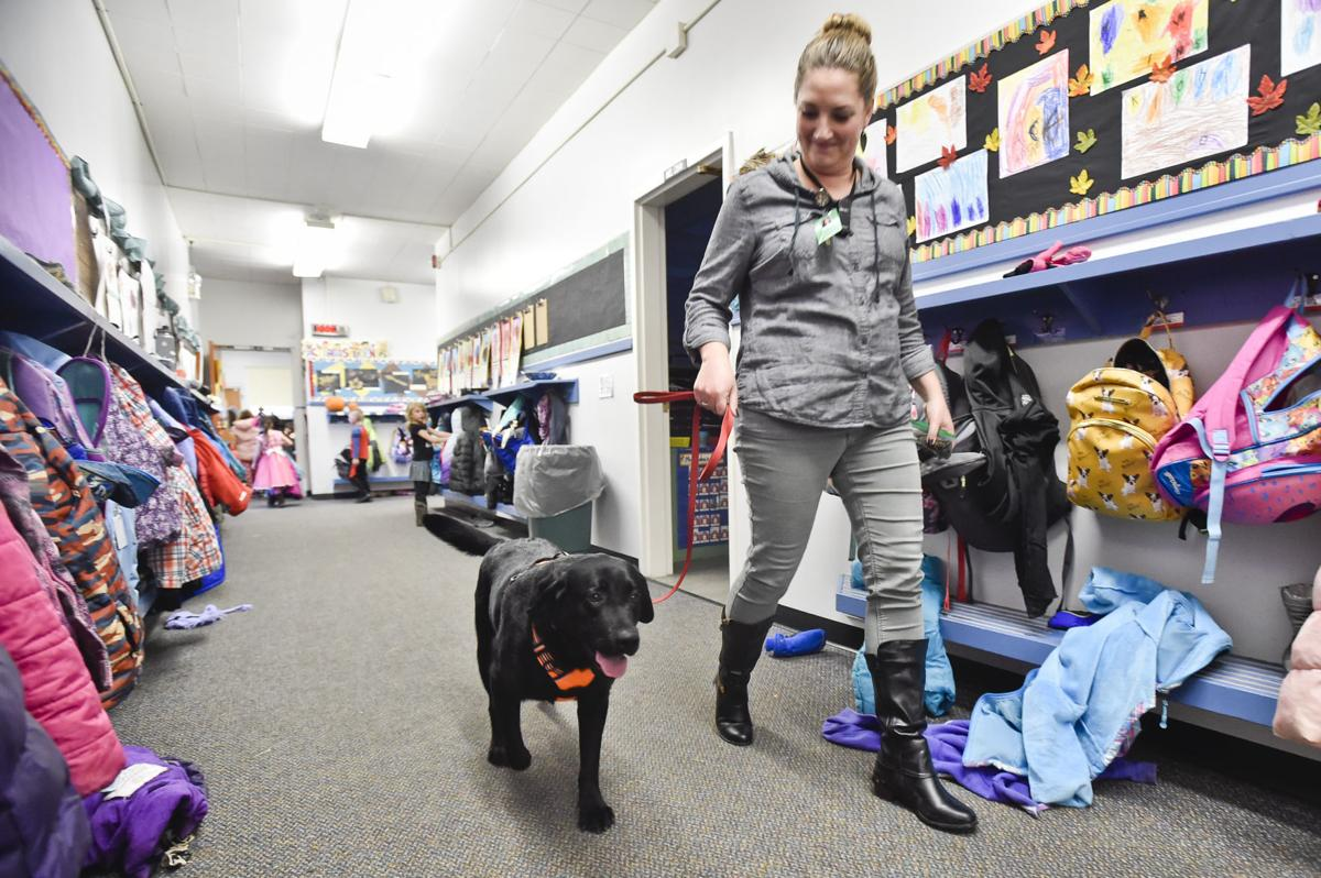 Broadwater first grade teacher Meghan Cohn walks Solo down the hall of the school last week.
