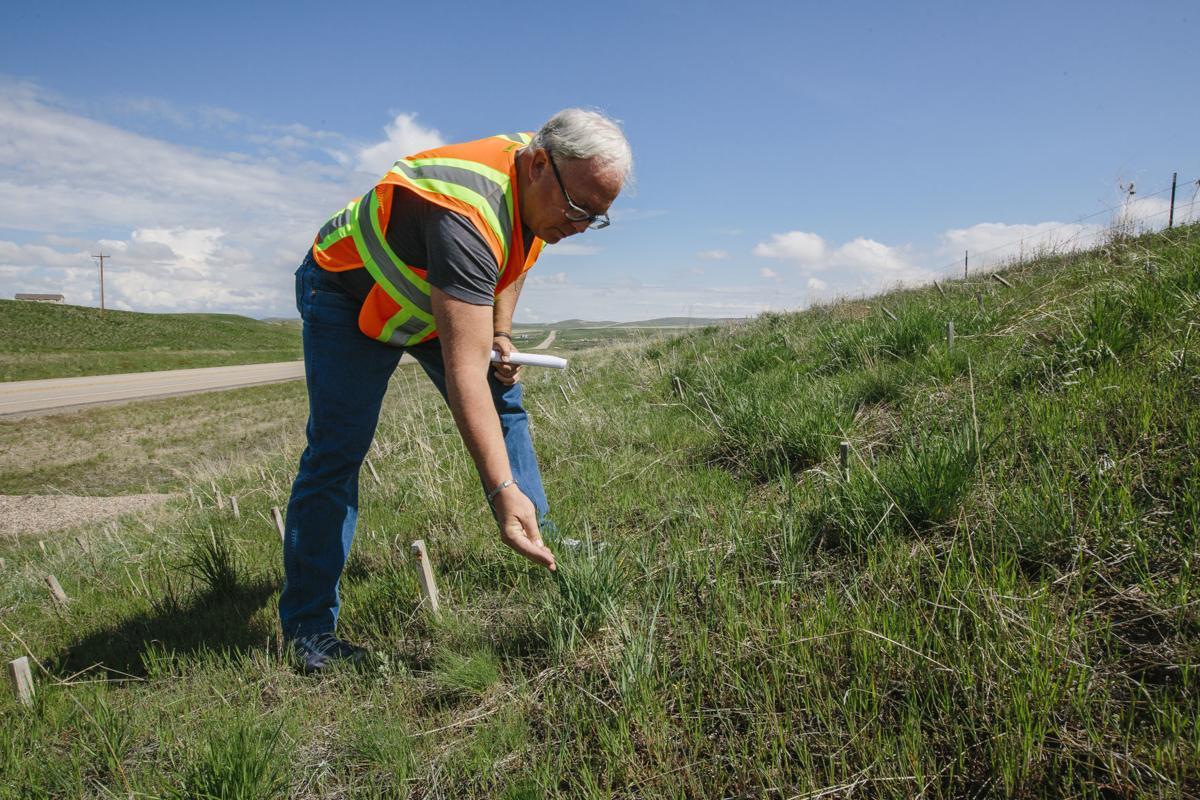 Western Transportation Institute Erosion Control Blankets Study