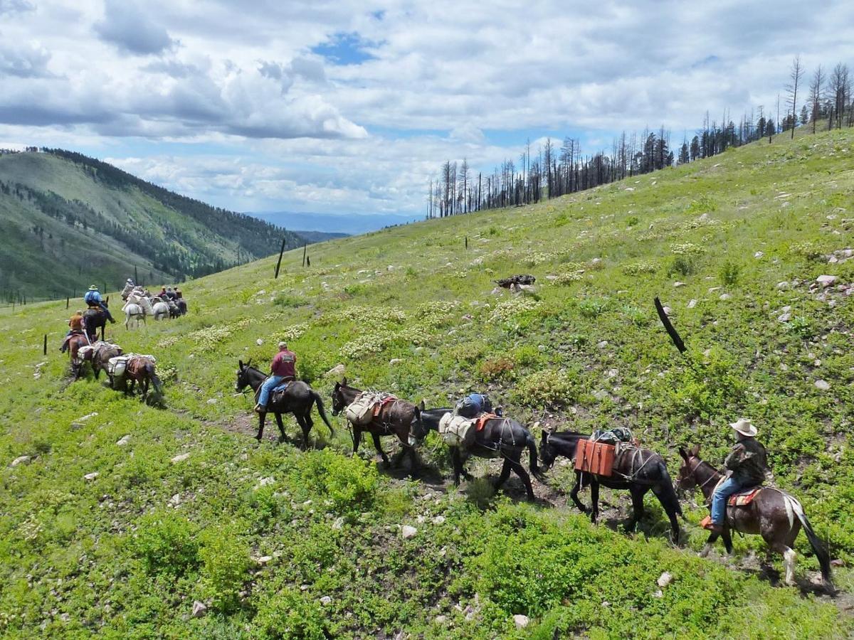 Last Chance Backcountry Horsemen Lead