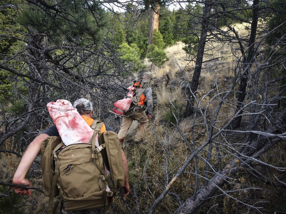 Hunters pack out two elk quarters