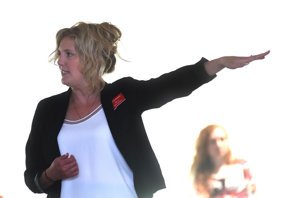 Hedalen presentation
