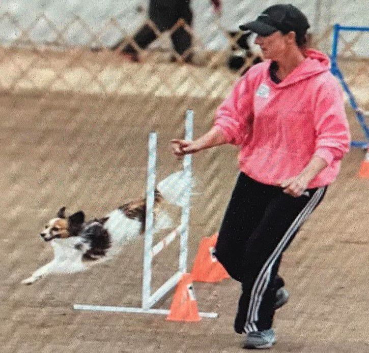 Stetson retires after numerous national agility titles
