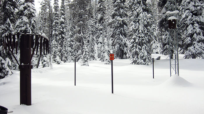 Snow Survey134.jpg