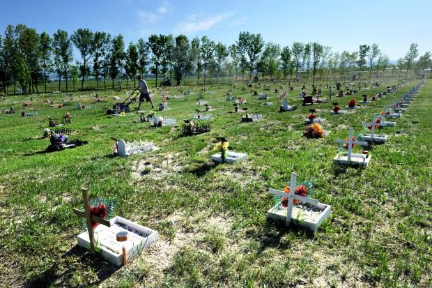 Pet Cemetery Renovations