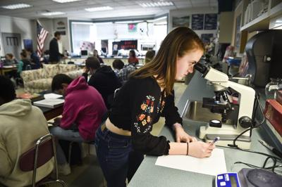 Helena High sophomore Tara Harrington works on a lab project Wednesday in AP biology class