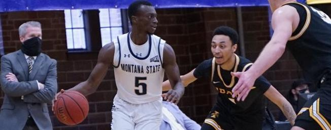 Montana State Bobcats men's basketball