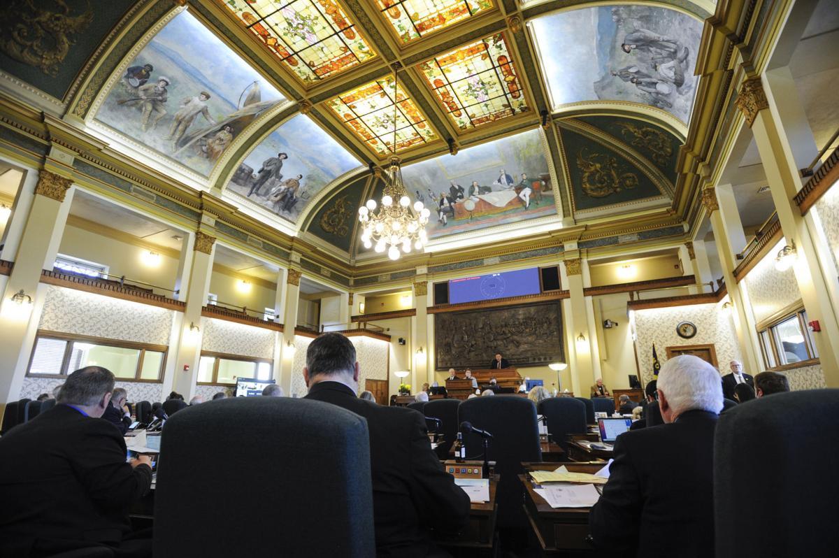 The Montana State Senate (copy)